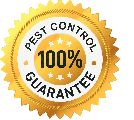 pest control 100% guarantee