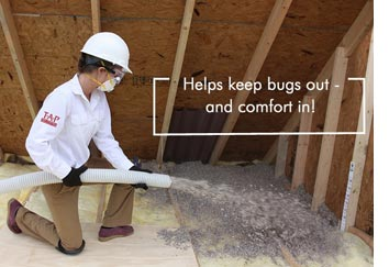 pest control energy star insulation