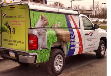 pennsylvania wildlife removal trapping expert